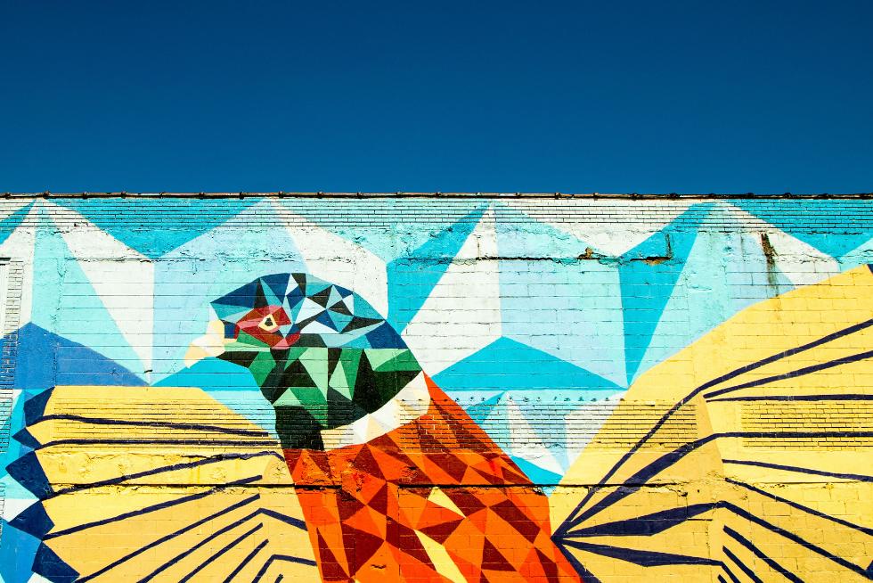 Bunter gemalter Vogel auf Häuserwand